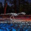 Tyrannosaurus treads lightly