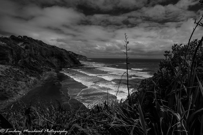 South for Muriwai