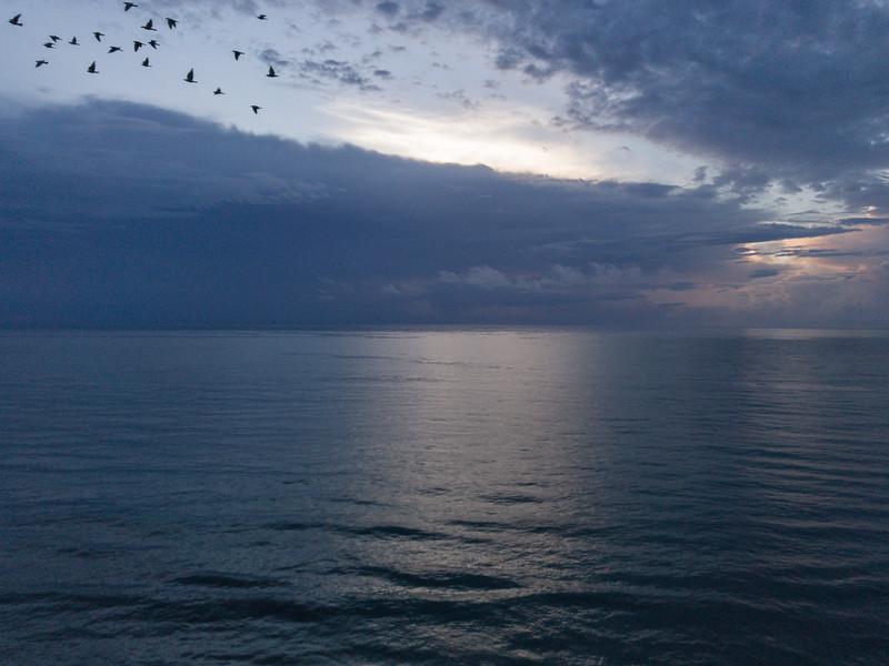 Florida dawn