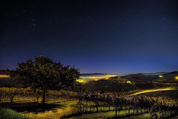 Moonlight in Tuscany