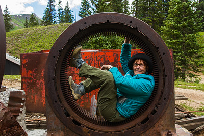 Connie Manchester Trying to Get Out, Longfellow Mine, San Juan Mountains - Colorado Wildflowers - Nancy Varga - July 2015