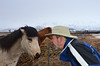 Tom and Icelandic Horse