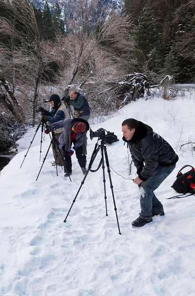 From back to front - Doug Beezley, Cosmas Liu, Julie Cheng, and Dennis Krukover read for the shot - Sequoia and Yosemite National Parks Tour - February 2013