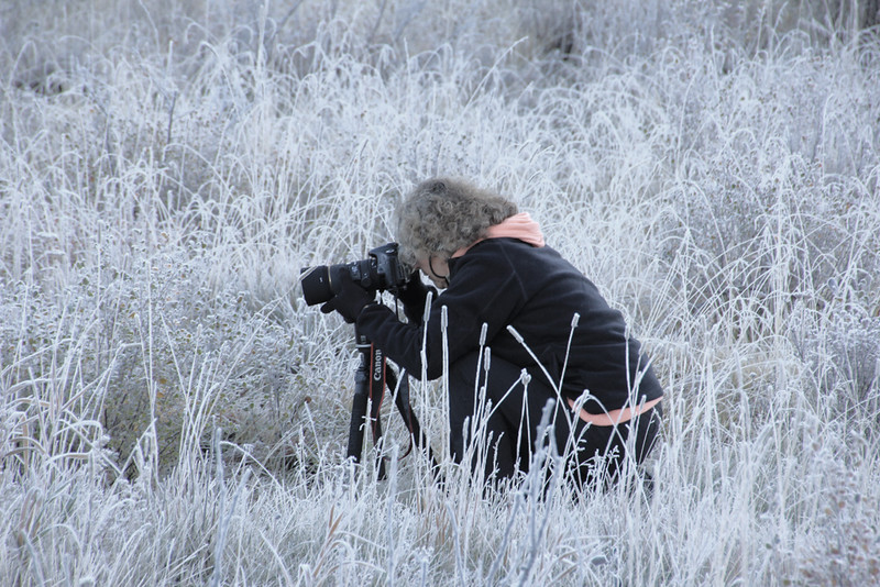 Chris Sprik in a frosty meadow - Fall Canadian Rockies Tour - Sue Cole - October 2014