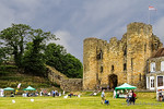 RSPB Fair at Tonbridge Castle