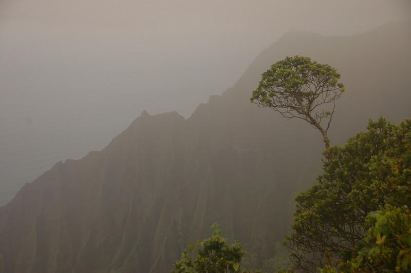 Hawaii-0375
