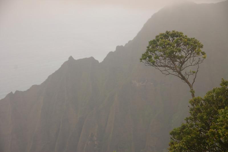 Hawaii-0358
