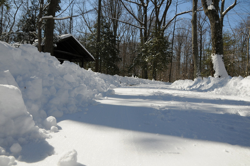 winter-2010-184