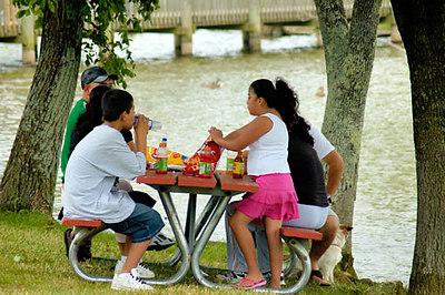 Stock image of hispanic family having a picnic at the park
