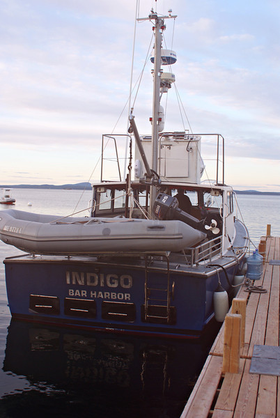 We sailed from the COA dock in Bar Harbor aboard the Indigo skippered by Capt. Toby Stephenson