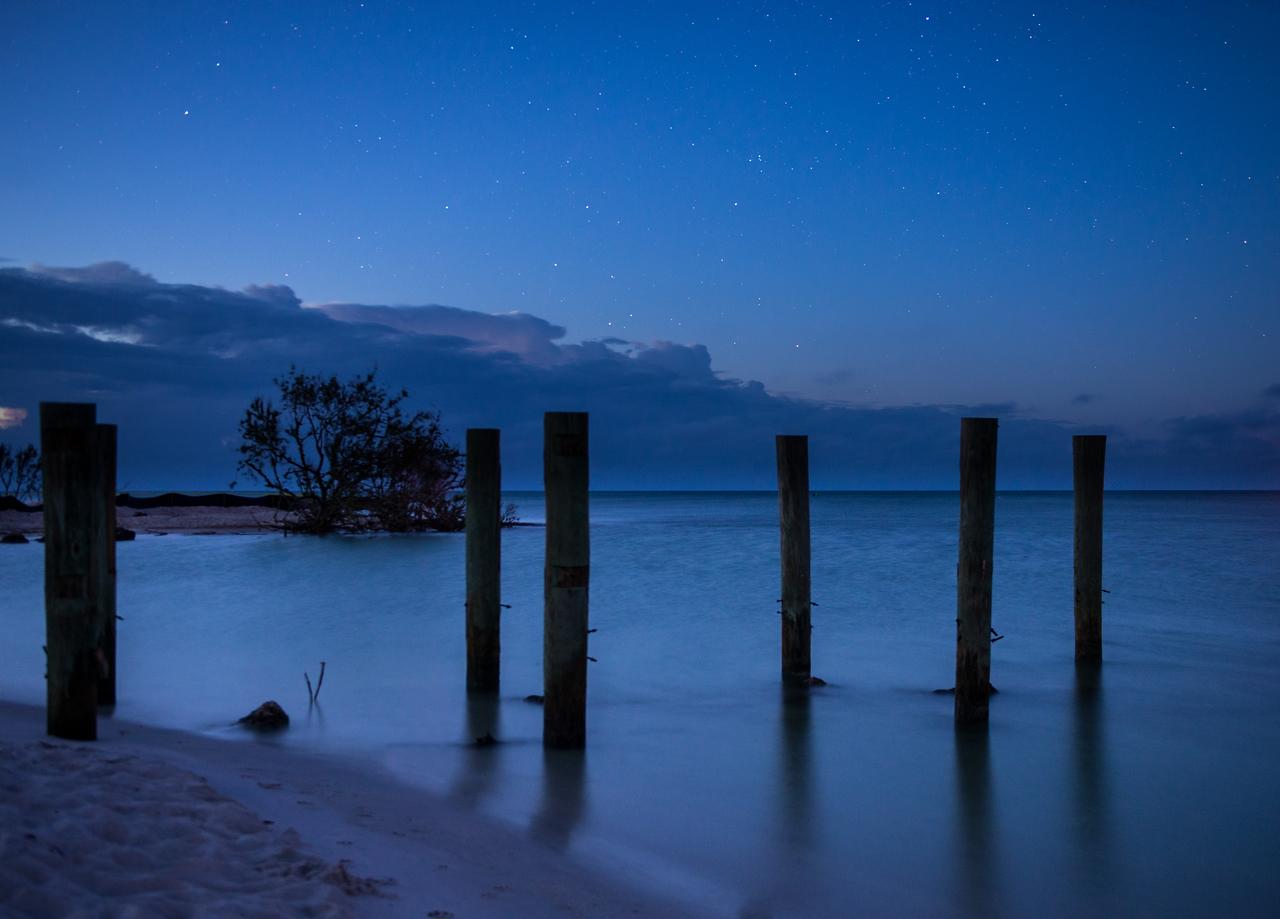Stars at Dawn