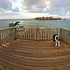 """Cruzer and I started this day and workation with a sunrise run…out to where America drops off into the sea. This lookout point is reached by taking the Cape Flattery trail to the most northwest point in the continental U.S.<br /> GW363-27nov2017-Cape Flattery WA<br /> <a href=""""https://connect.garmin.com/modern/activity/2354240512"""">https://connect.garmin.com/modern/activity/2354240512</a>"""