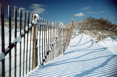 Winter Zig Zag