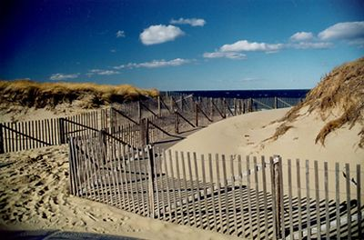 Race Point Beach Fence