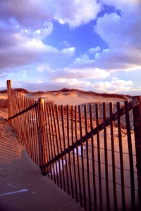 Herring Cove Dune Fence