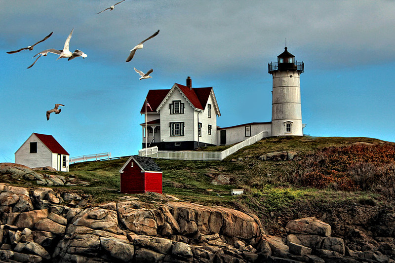 Seagulls and Lighthouse