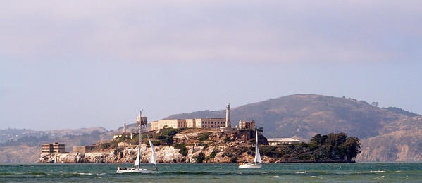Sailboats near Alcatraz