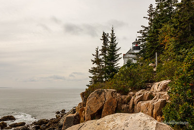Bass Harbor Head Light - Acadia NP