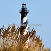 Cape Hatteras Lighthouse is the tallest in the nation and famous symbol of North Carolina. The lighthouse site houses a visitors center that is open throughout the year and houses displays on the island's maritime history. The beacon from the light can be seen some 20-miles out to sea and has warned sailors for more than 100 years of the treacherous Diamond Shoals, the shallow sandbars which extend some 14 miles out into the ocean off Cape Hatteras. <br /> <br /> It is said that the engineer who was originally assigned the task of painting North Carolina's lighthouses, got the plans mixed up and the diamond-shaped figures, suitable for warning traffic away from Diamond Shoals, went to Cape Lookout and the Cape Hatteras Lighthouse received the spiral striping, thereby forever gaining the nickname ''The Big Barber Pole.''<br /> <br /> It was built with 1,250,000 bricks baked in kilns along the James River in Virginia and brought in scows into Cape Creek where it was hauled by oxen one mile to the building site in Buxton. Its walls at the base are 14 feet of solid masonry and narrow to eight feet at the top. Weighing 6,250 tons, the lighthouse was built with no pilings under it - just a foundation built of heart pine. Towering 196 feet from the base to the top brick and then topped with an iron superstructure it become the tallest brick lighthouse on the American coast at 208 feet. <br /> <br /> In the summer of 1999, as the ever-encroaching waters of the Atlantic Ocean threaten this stalwart structure, the Cape Hatteras Light was moved from its original location!