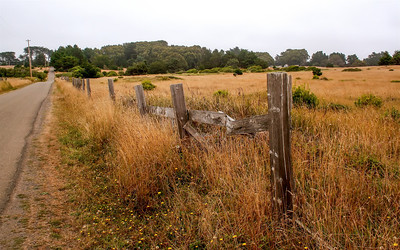 Fence on Lighthouse Road