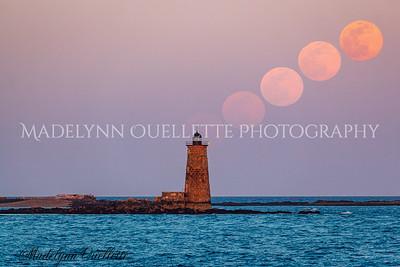 Full Worm Moon Rising
