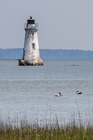Cockspur Island Light