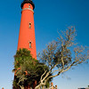 Ponce De Leon Light