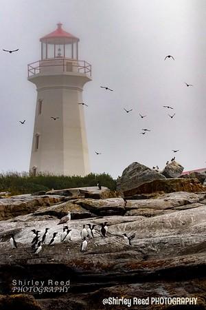 Mathias Island Lighthouse