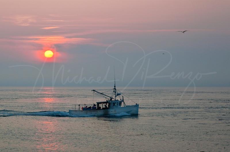 Trawling - 5511 W4 HCC