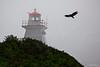 Cape Enrage Lighthouse   - Newfoundland Canada