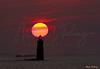 Ram's Island Sunrise 9356 w57