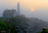 Foggy Morning 8484