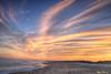 Frisco Sunset 2294 w36