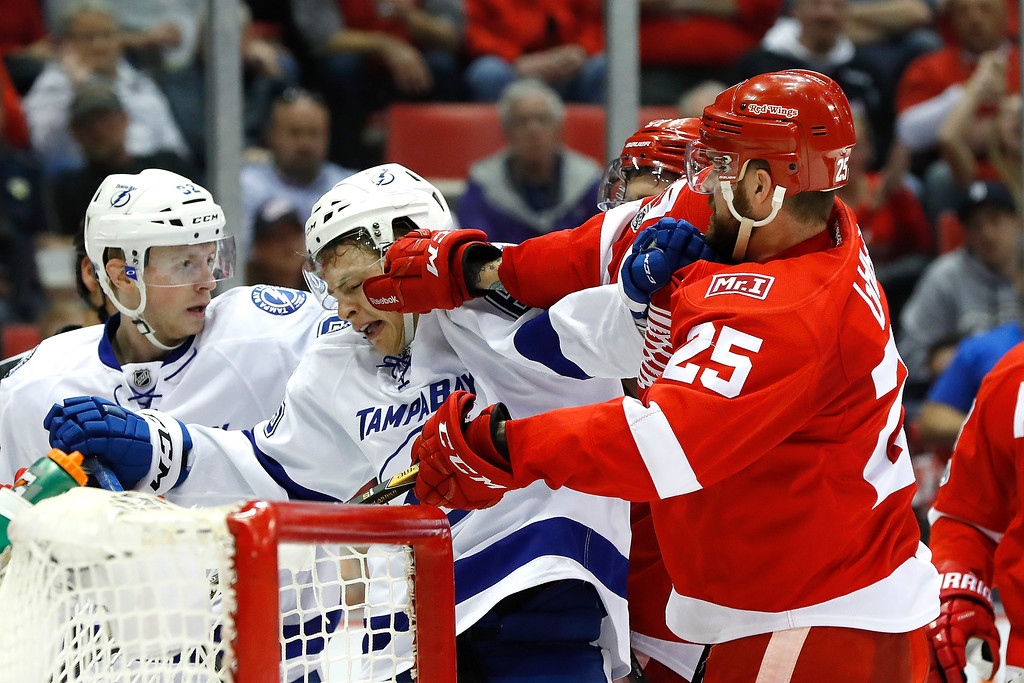 . Detroit Red Wings defenseman Mike Green (25) pushes Tampa Bay Lightning center Yanni Gourde (65) in the first period of an NHL hockey game Friday, March 24, 2017, in Detroit. (AP Photo/Paul Sancya)