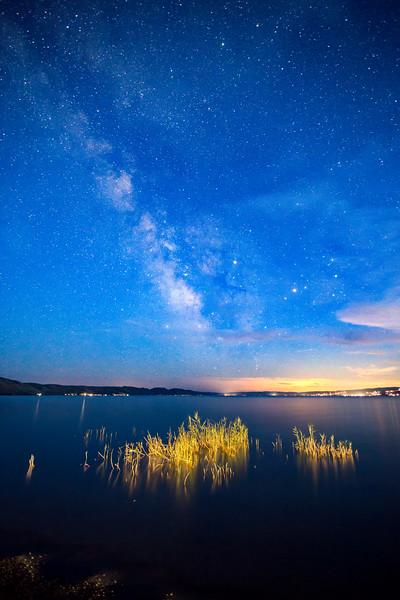 Bear Lake reeds and milkyway