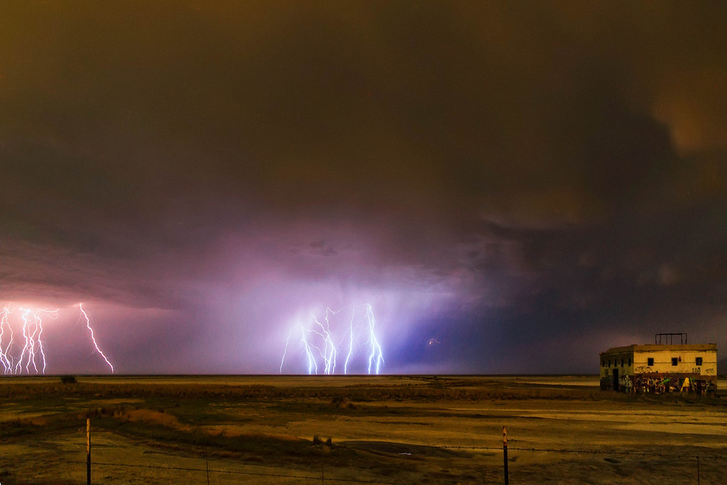 lightning cells and the temple of the birds