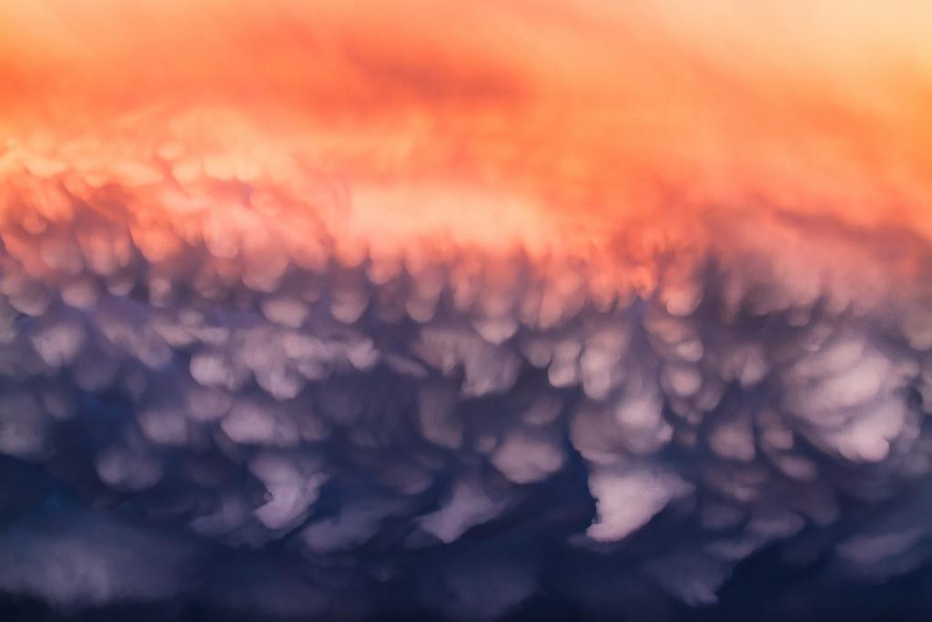 Worlds's Mist