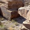 Desert Petroglyphs