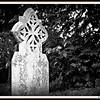 FTGwroxtonbanbury2010 019
