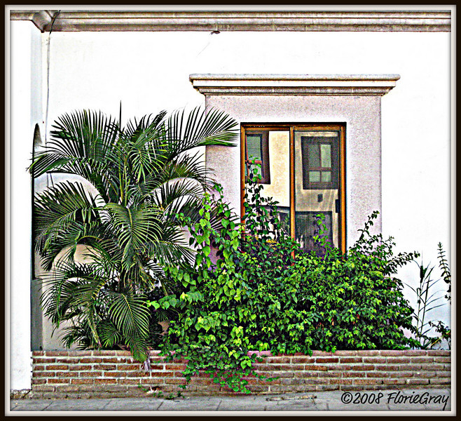 Window on Main Street, San Jose del Cabo