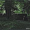 Deep <br /> ©2008 FlorieGray