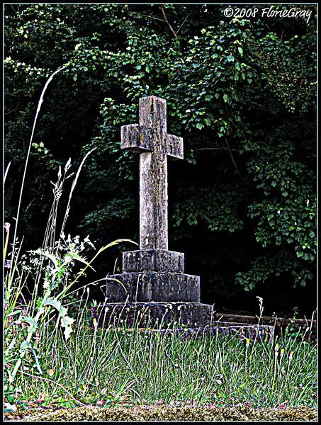 Standing Tall <br /> ©2008 FlorieGray