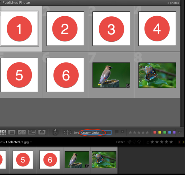 """Lightroom custom sort <a href=""""http://smu.gs/2nUOE4Y"""">http://smu.gs/2nUOE4Y</a>"""