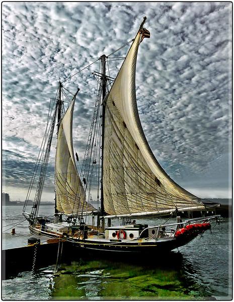 Anchored Sails