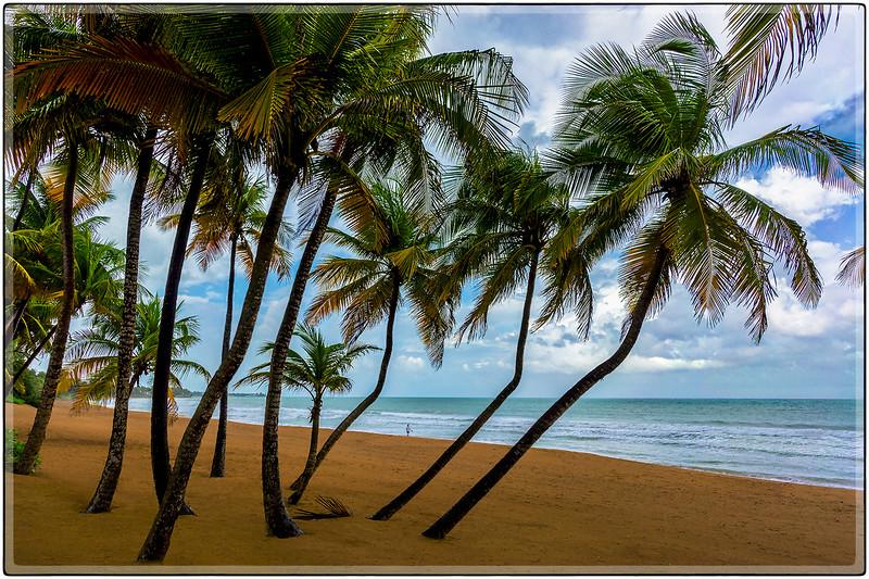 Paseo en la Playa, Rio Grande