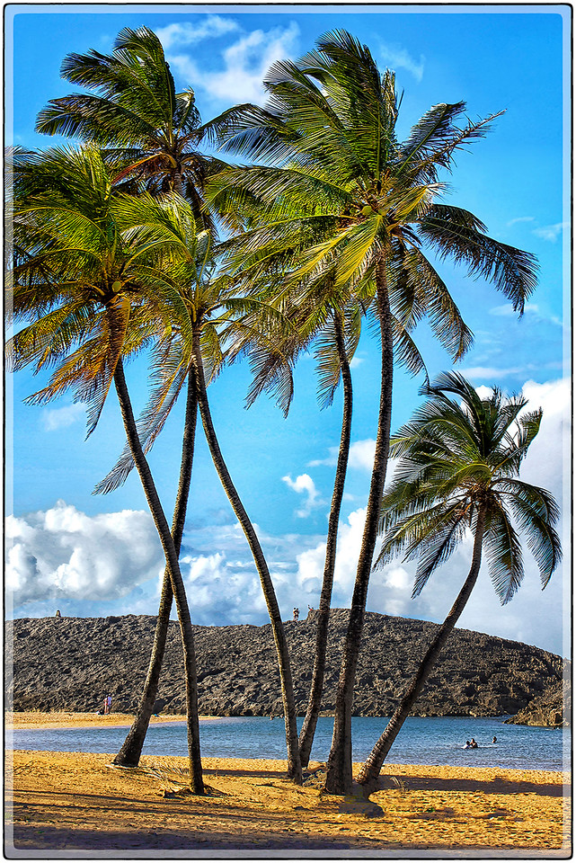 Playa de Vega Baja