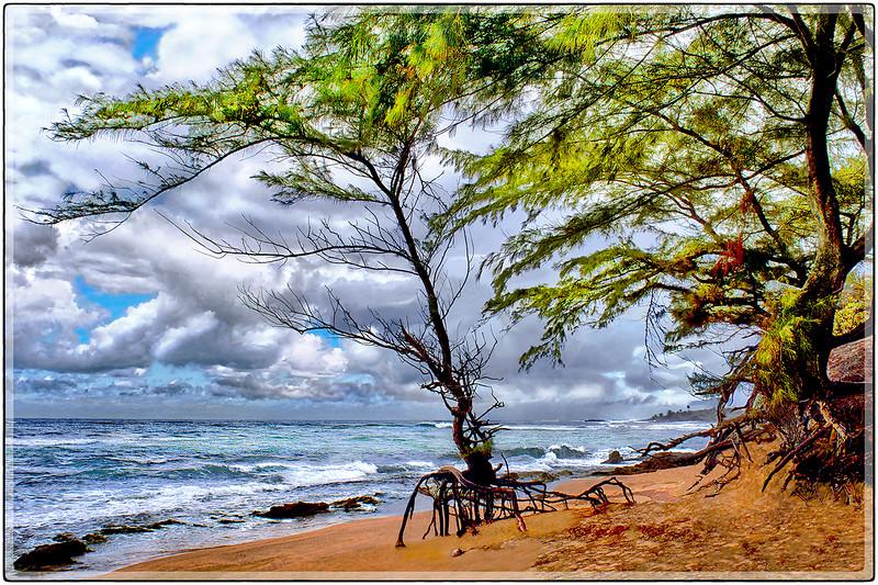 Isla Verde