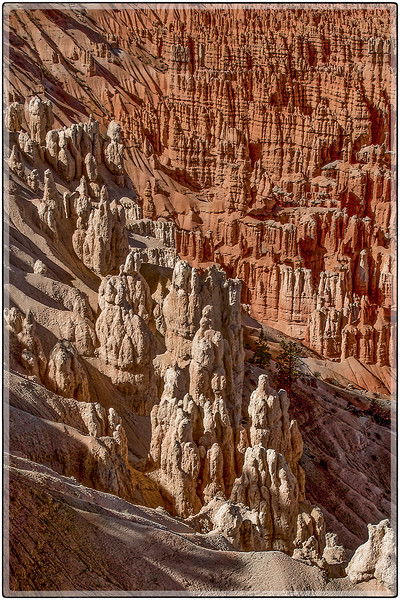 Weathered Towers, Bryce Canyon, Utah