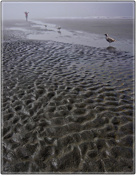 Sand Patterns and Fog