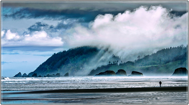 Misty Morning, Oregon Coast